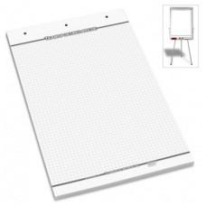 Flipchart block - checkered (25 sheets) 600 x 900 mm