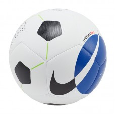 Nike Futsal Pro 101